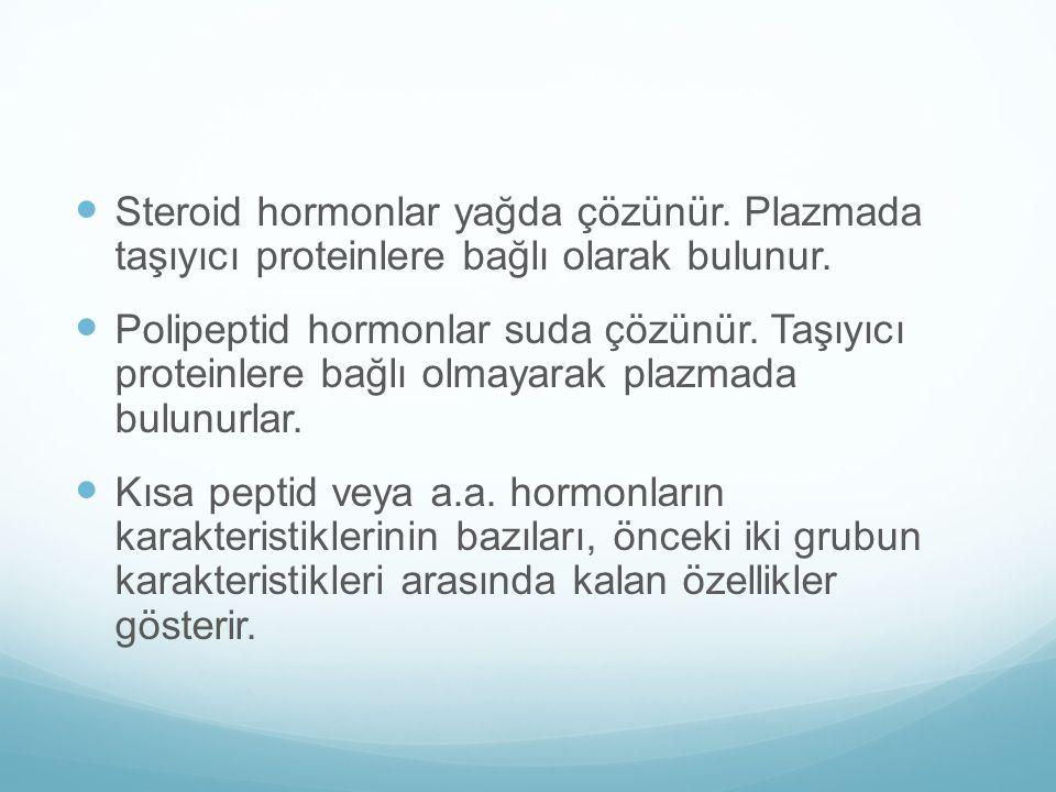 Steroid hormonlar yağda çözünür
