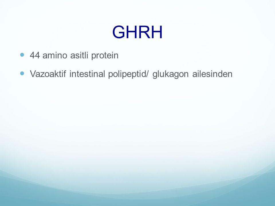 GHRH 44 amino asitli protein