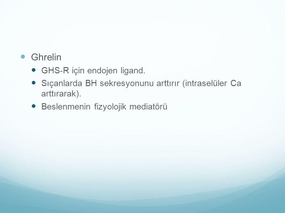 Ghrelin GHS-R için endojen ligand.
