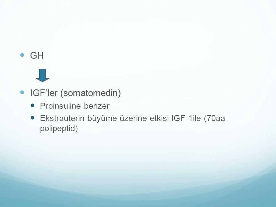 IGF'ler (somatomedin)