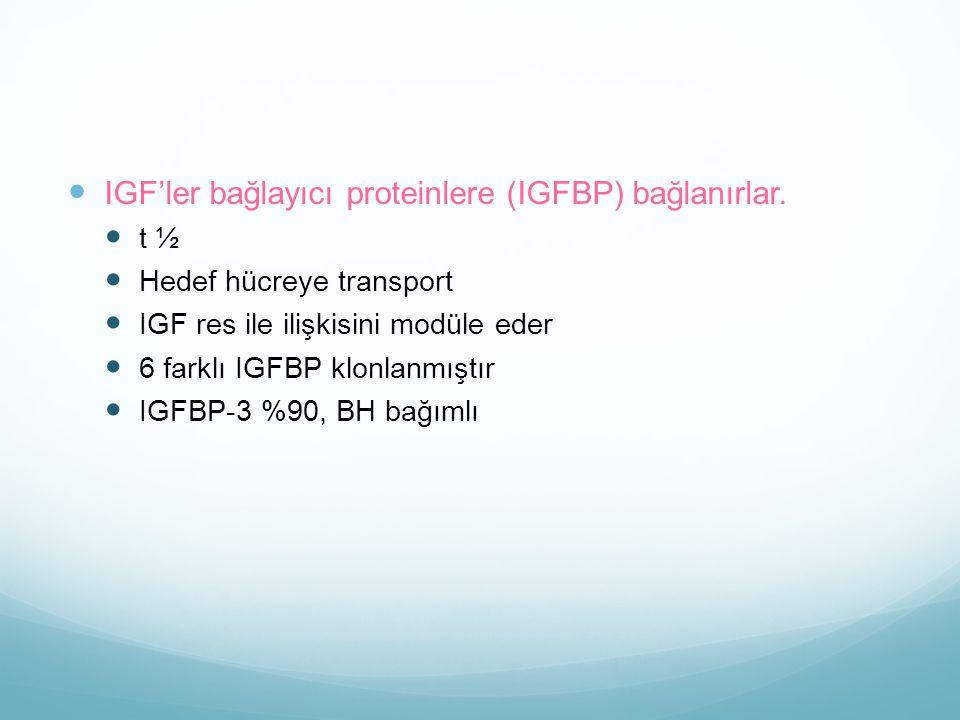 IGF'ler bağlayıcı proteinlere (IGFBP) bağlanırlar.