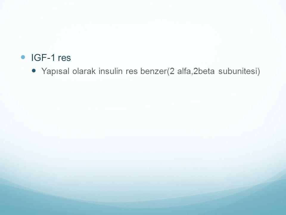 IGF-1 res Yapısal olarak insulin res benzer(2 alfa,2beta subunitesi)
