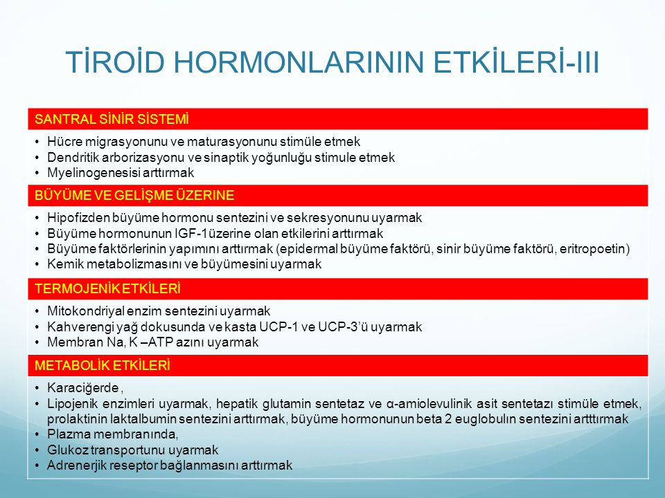 TİROİD HORMONLARININ ETKİLERİ-III