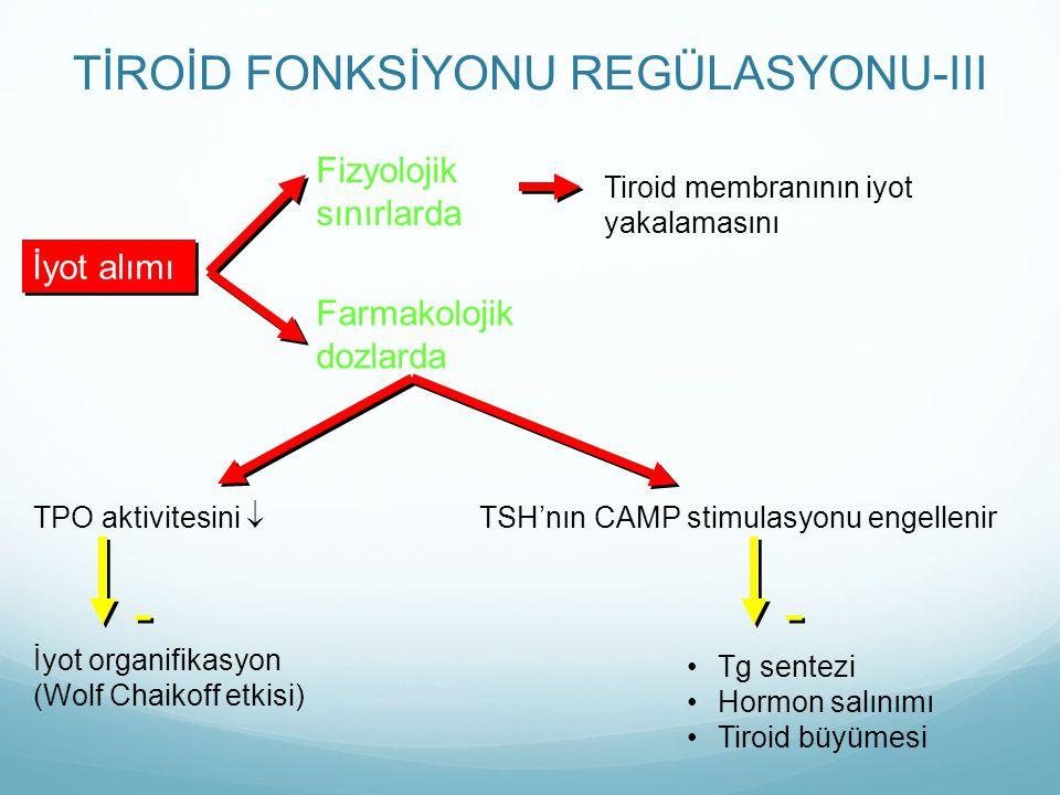 TİROİD FONKSİYONU REGÜLASYONU-III