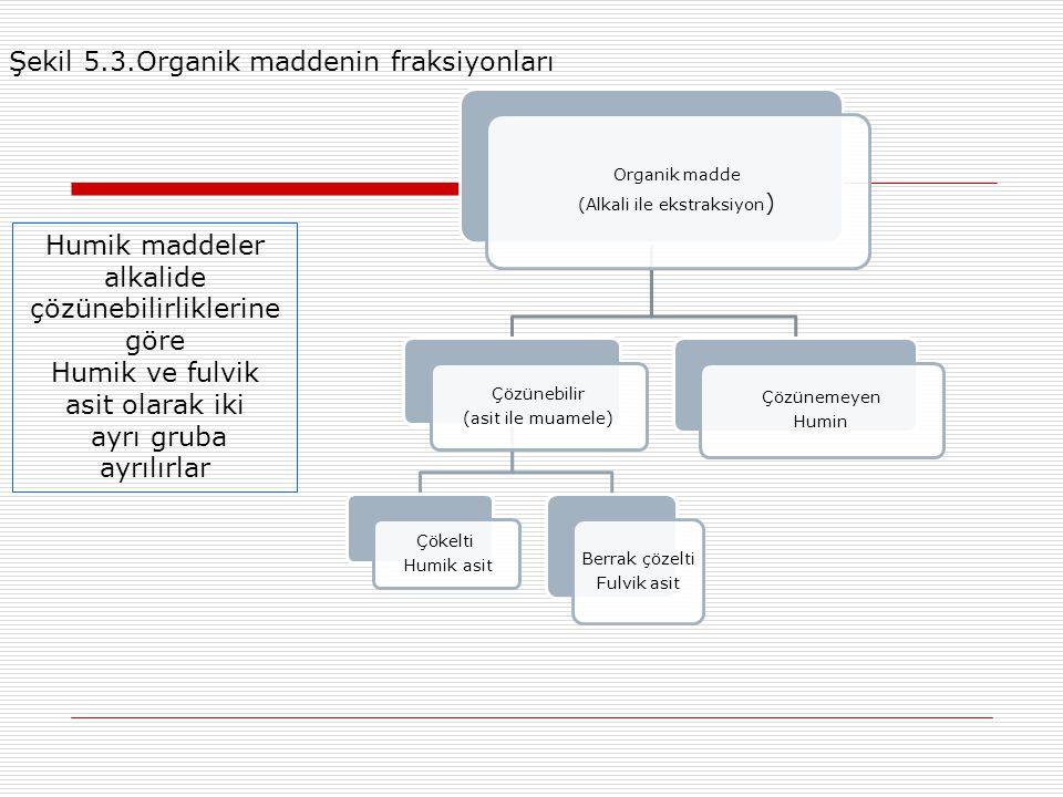 Şekil 5.3.Organik maddenin fraksiyonları
