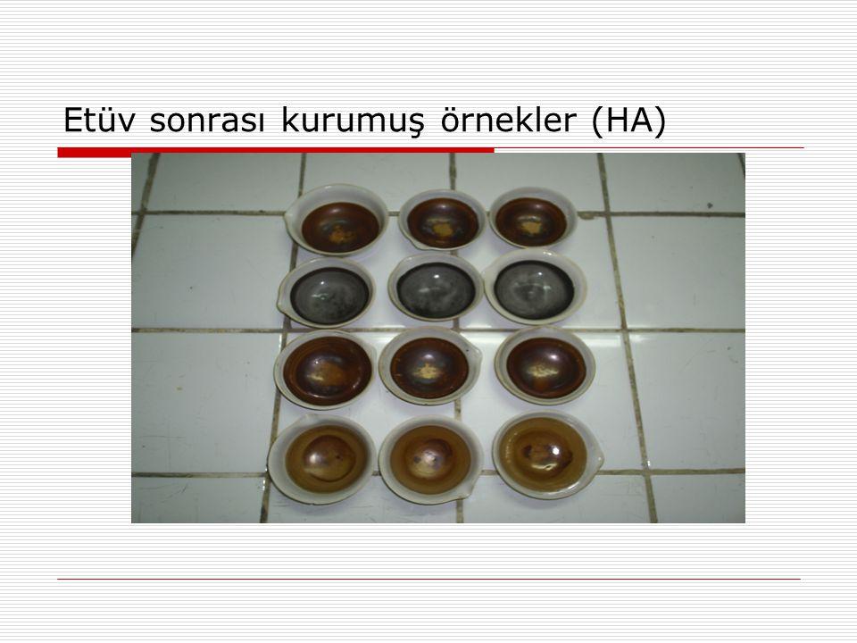 Etüv sonrası kurumuş örnekler (HA)