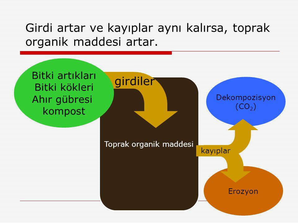 Girdi artar ve kayıplar aynı kalırsa, toprak organik maddesi artar.
