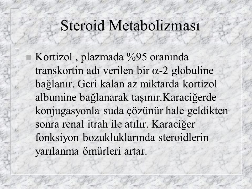 Steroid Metabolizması