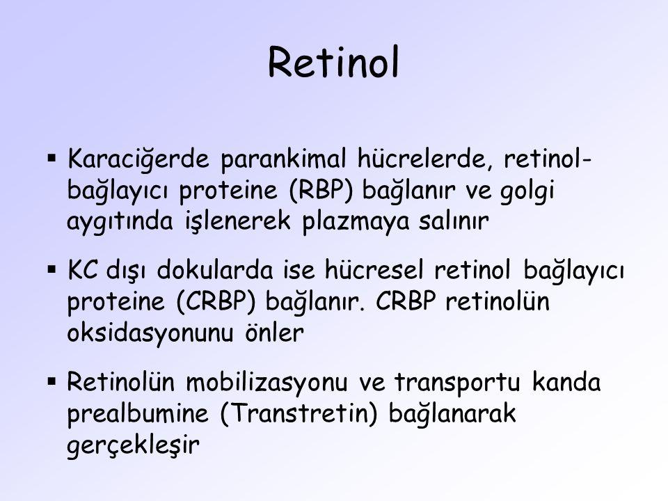 Retinol Karaciğerde parankimal hücrelerde, retinol-bağlayıcı proteine (RBP) bağlanır ve golgi aygıtında işlenerek plazmaya salınır.
