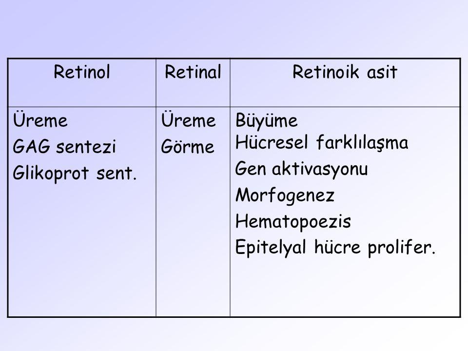 Retinol Retinal. Retinoik asit. Üreme. GAG sentezi. Glikoprot sent. Görme. Büyüme Hücresel farklılaşma.