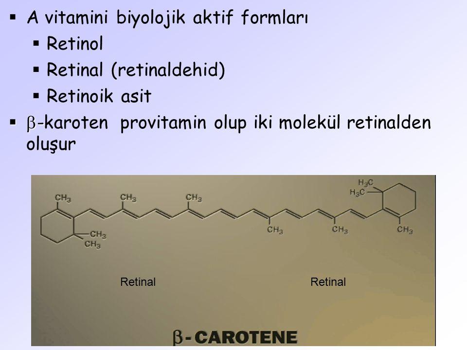 A vitamini biyolojik aktif formları Retinol Retinal (retinaldehid)