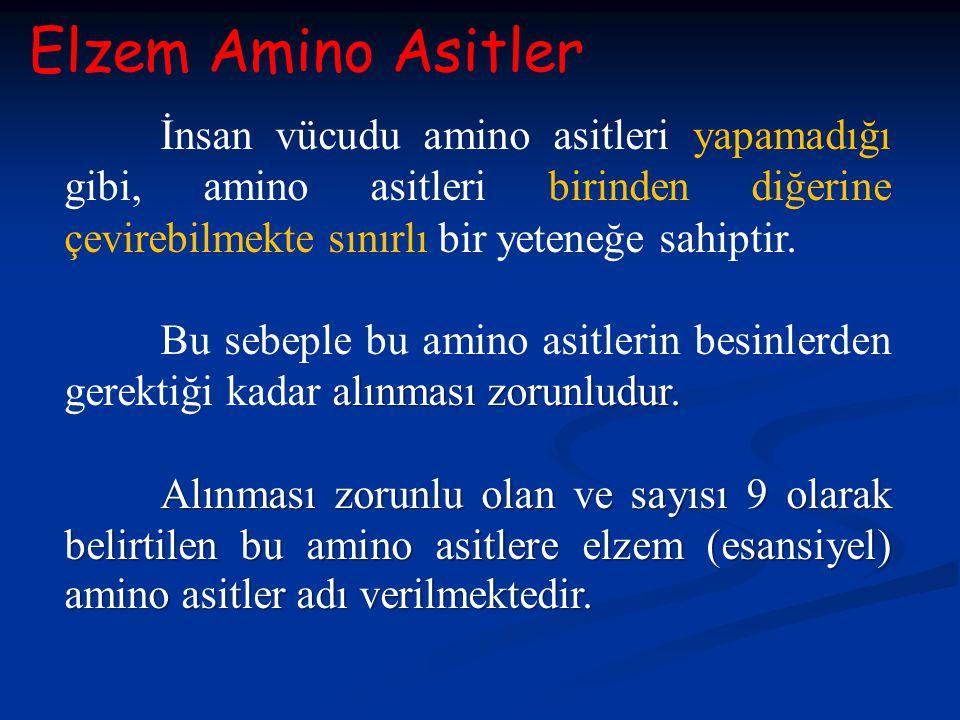 Elzem Amino Asitler İnsan vücudu amino asitleri yapamadığı gibi, amino asitleri birinden diğerine çevirebilmekte sınırlı bir yeteneğe sahiptir.