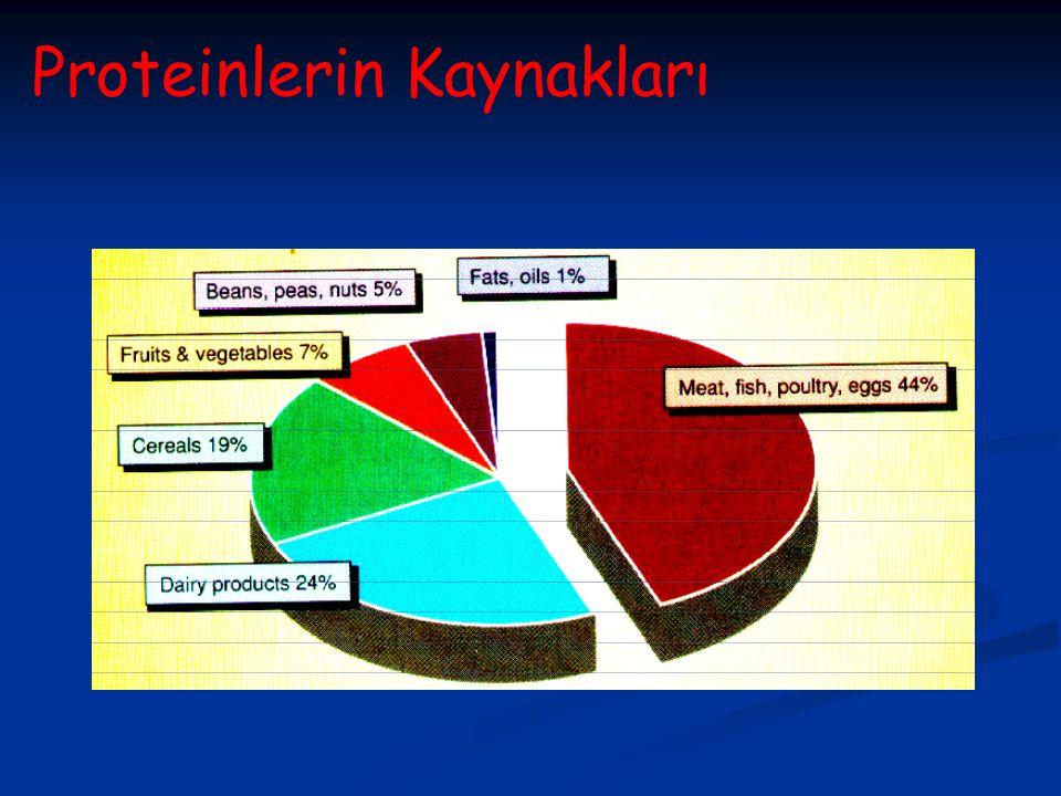 Proteinlerin Kaynakları