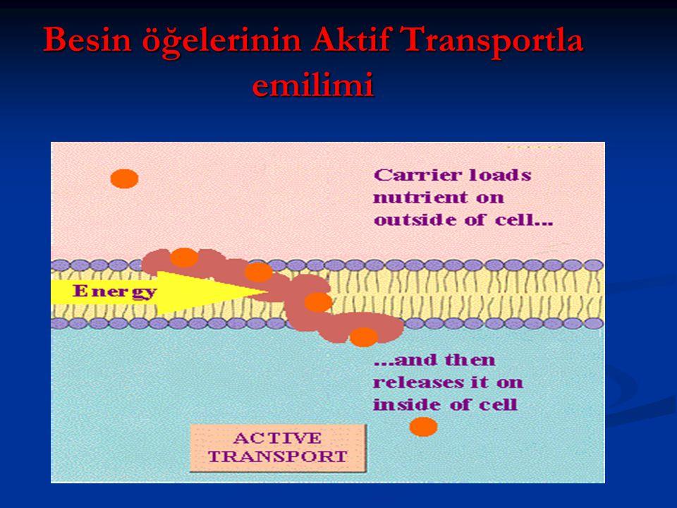 Besin öğelerinin Aktif Transportla emilimi