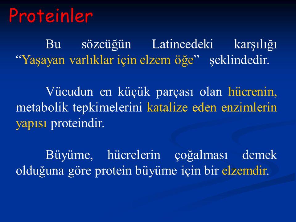 Proteinler Bu sözcüğün Latincedeki karşılığı Yaşayan varlıklar için elzem öğe şeklindedir.