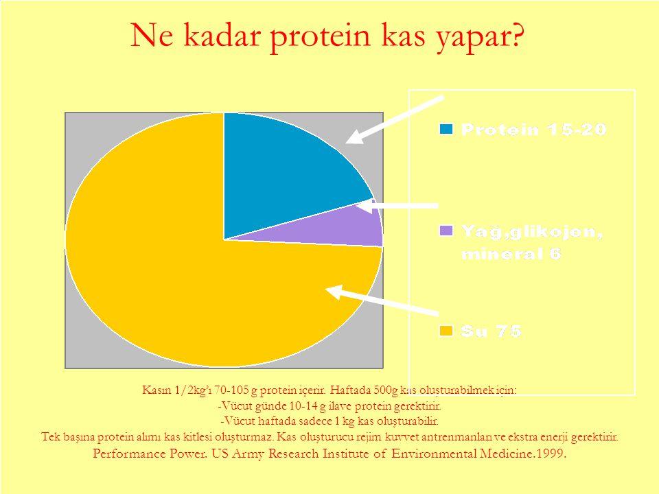 Ne kadar protein kas yapar