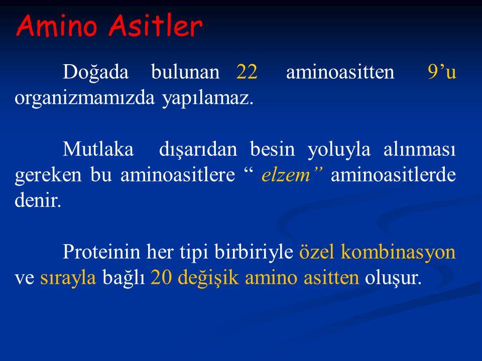 Amino Asitler Doğada bulunan 22 aminoasitten 9'u organizmamızda yapılamaz.