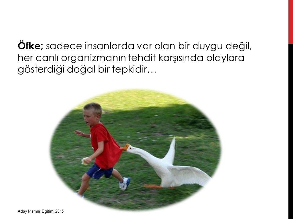 Öfke; sadece insanlarda var olan bir duygu değil, her canlı organizmanın tehdit karşısında olaylara gösterdiği doğal bir tepkidir…