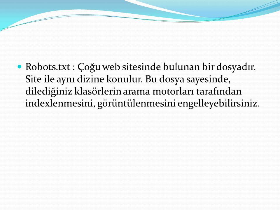 Robots. txt : Çoğu web sitesinde bulunan bir dosyadır