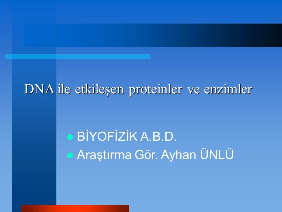 DNA ile etkileşen proteinler ve enzimler
