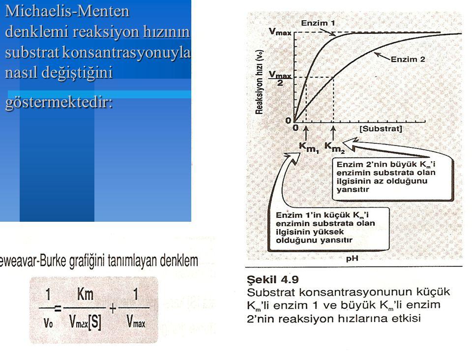 Michaelis-Menten denklemi reaksiyon hızının substrat konsantrasyonuyla nasıl değiştiğini göstermektedir: