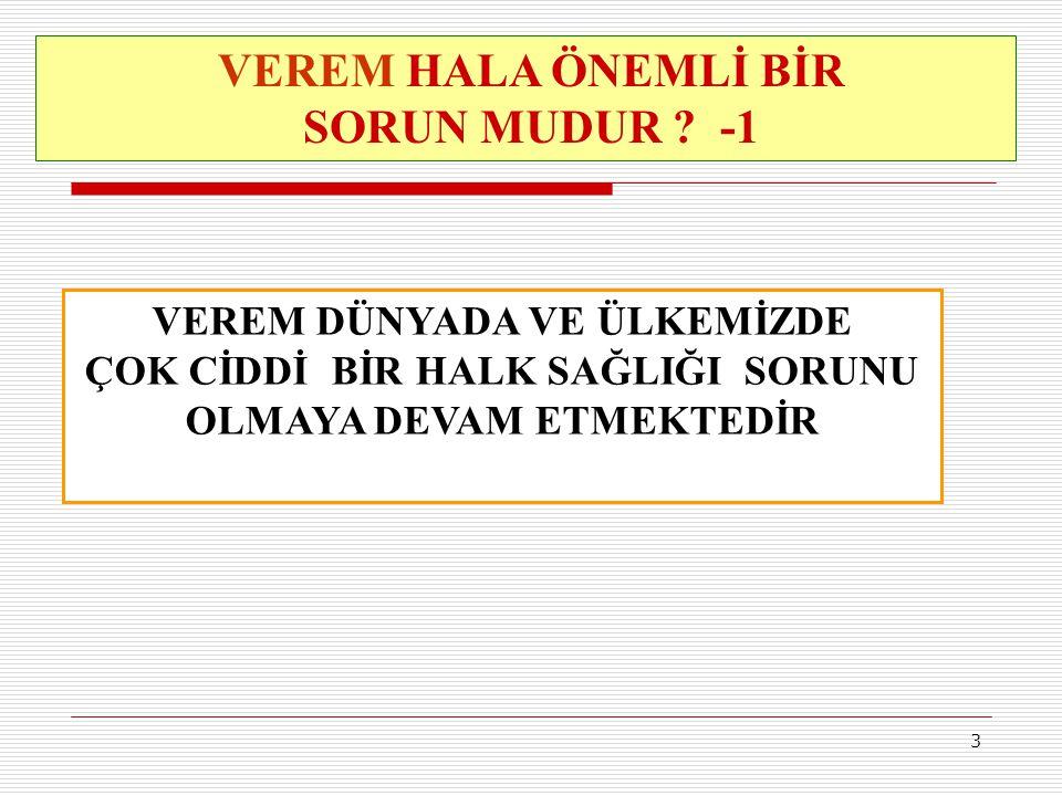 VEREM HALA ÖNEMLİ BİR SORUN MUDUR -1