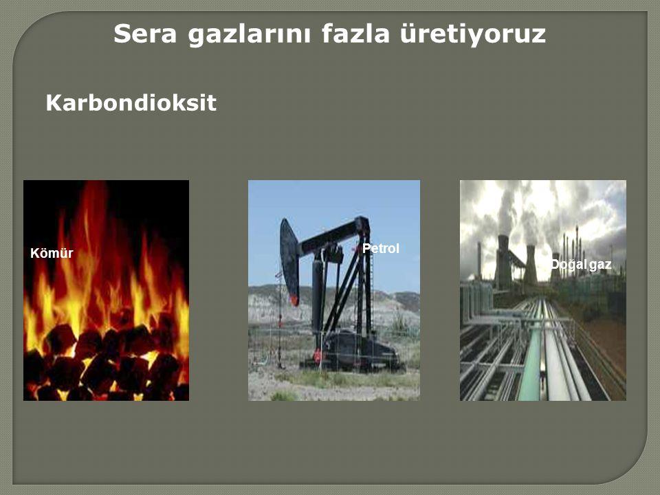 Sera gazlarını fazla üretiyoruz