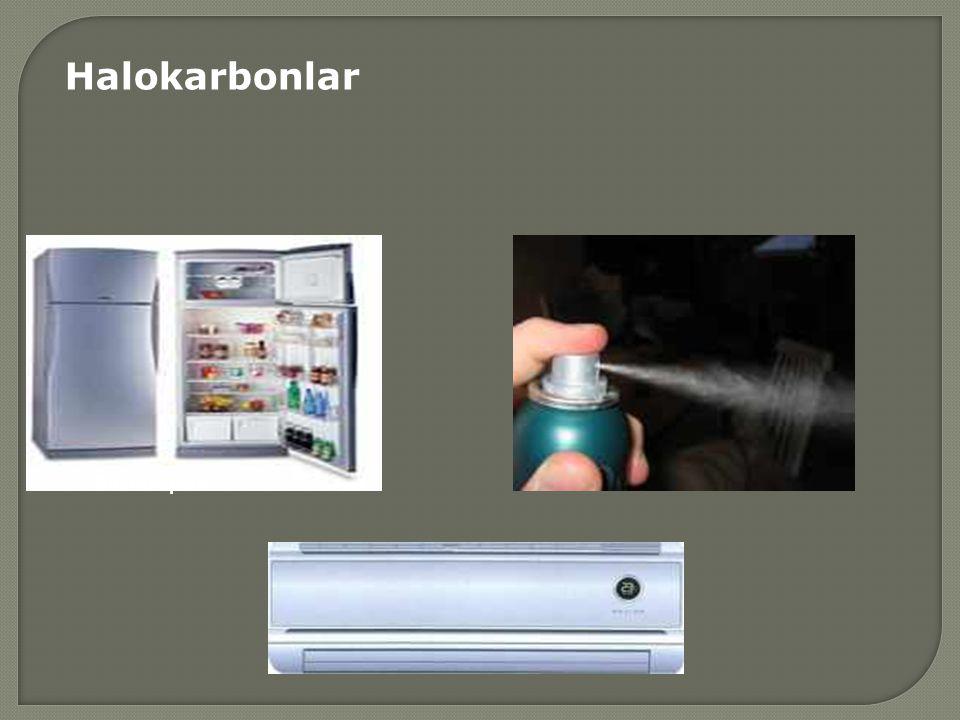 Halokarbonlar Buzdolapları