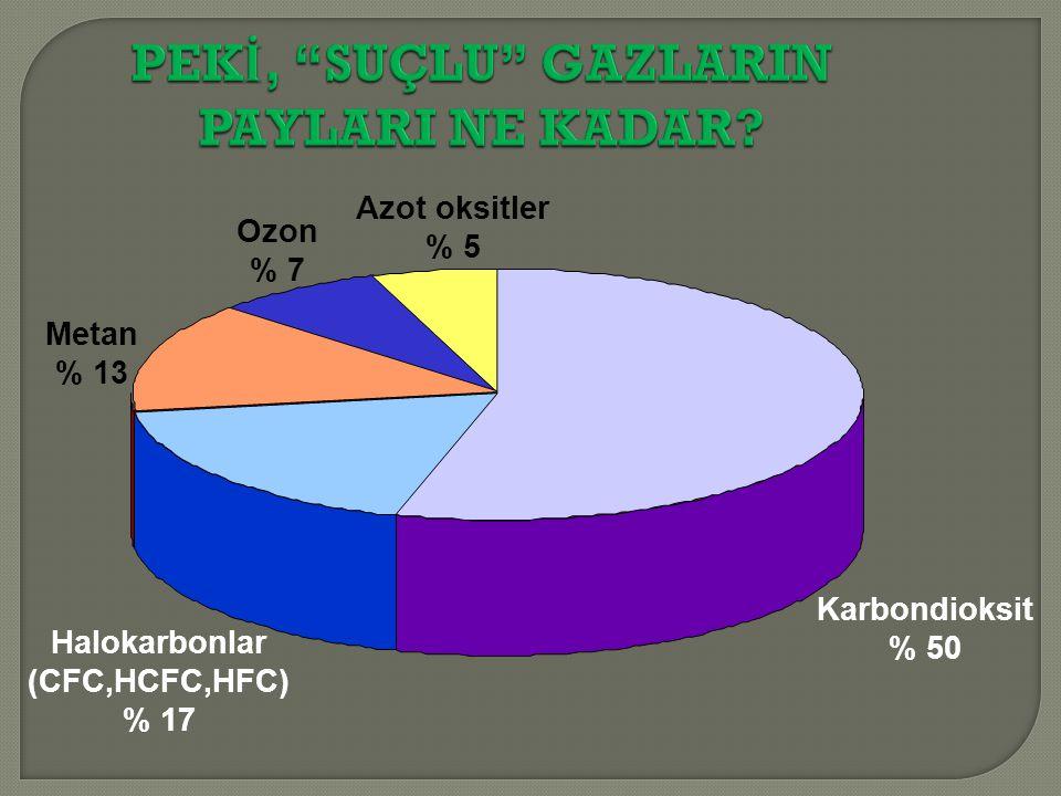 PEKİ, SUÇLU GAZLARIN PAYLARI NE KADAR