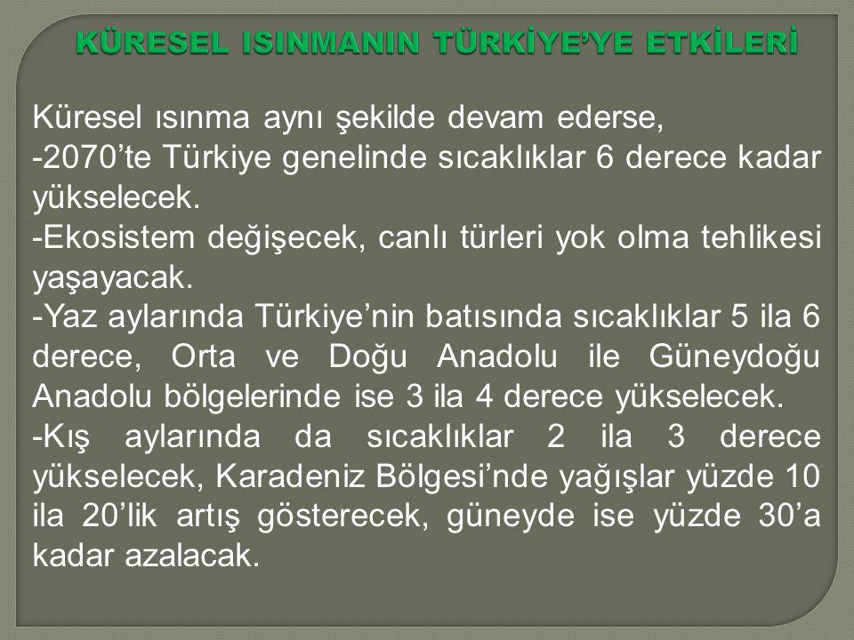 KÜRESEL ISINMANIN TÜRKİYE'YE ETKİLERİ