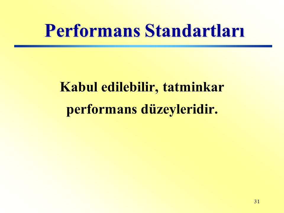 Performans Standartları