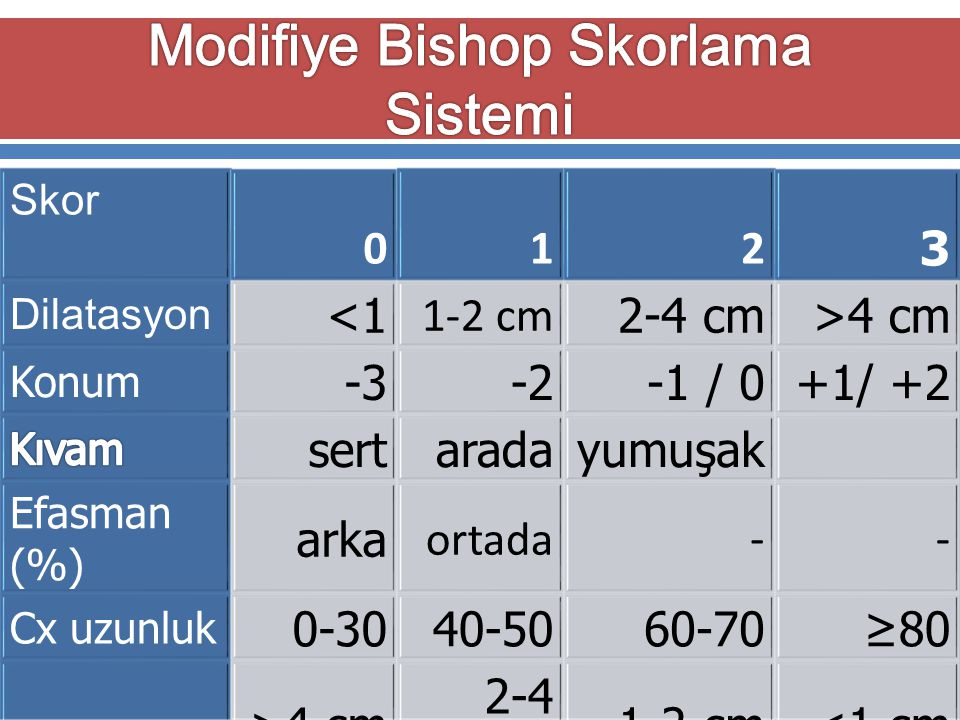 Modifiye Bishop Skorlama Sistemi