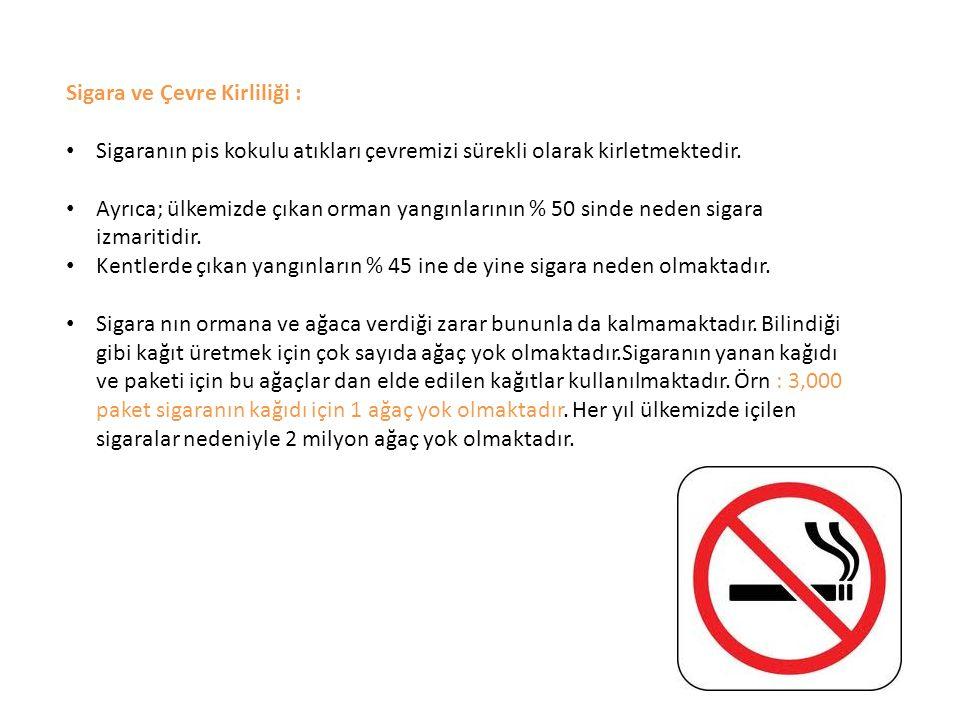 Sigara ve Çevre Kirliliği :