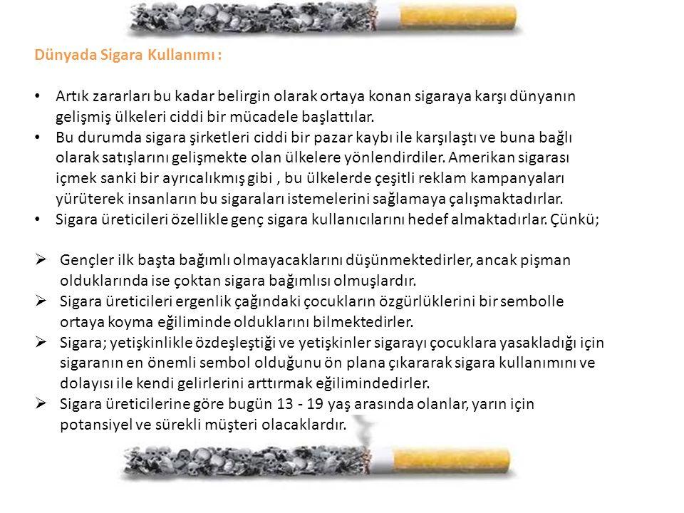 Dünyada Sigara Kullanımı :