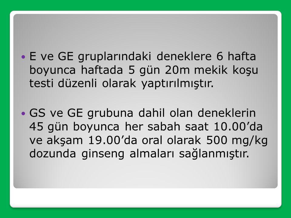 E ve GE gruplarındaki deneklere 6 hafta boyunca haftada 5 gün 20m mekik koşu testi düzenli olarak yaptırılmıştır.