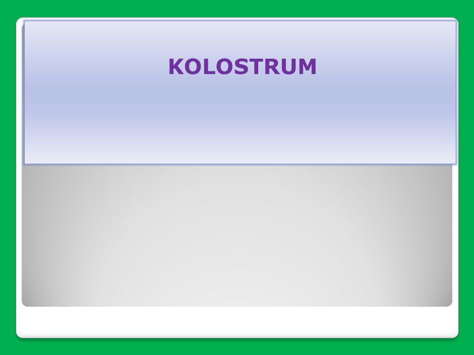 KOLOSTRUM