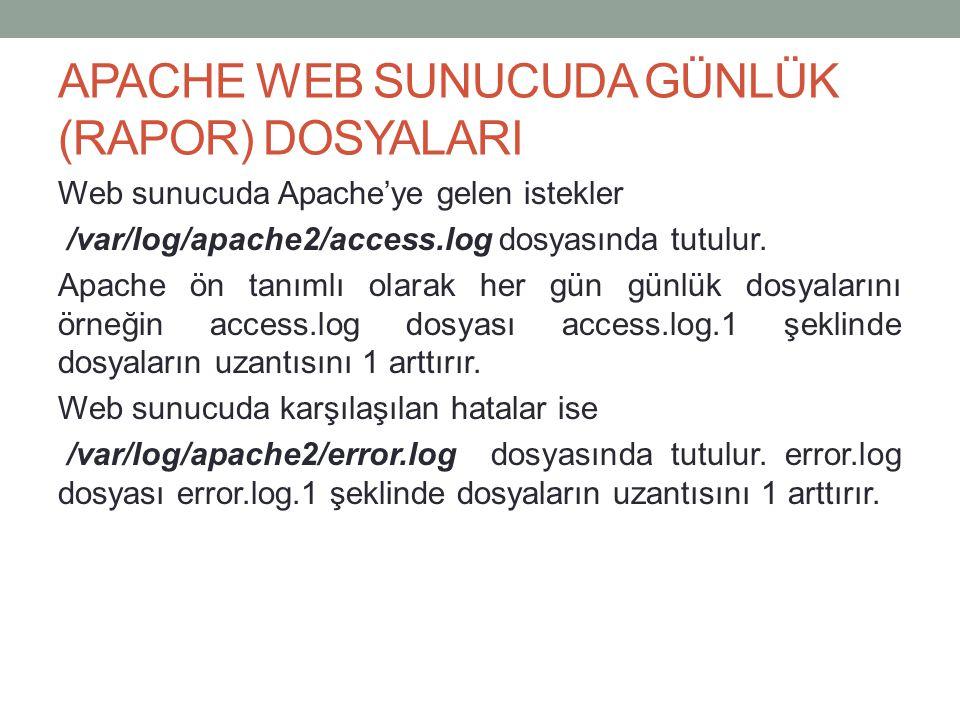 APACHE WEB SUNUCUDA GÜNLÜK (RAPOR) DOSYALARI