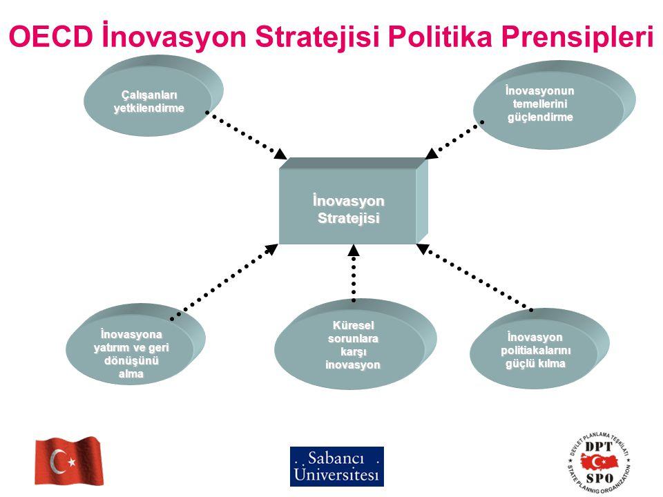OECD İnovasyon Stratejisi Politika Prensipleri