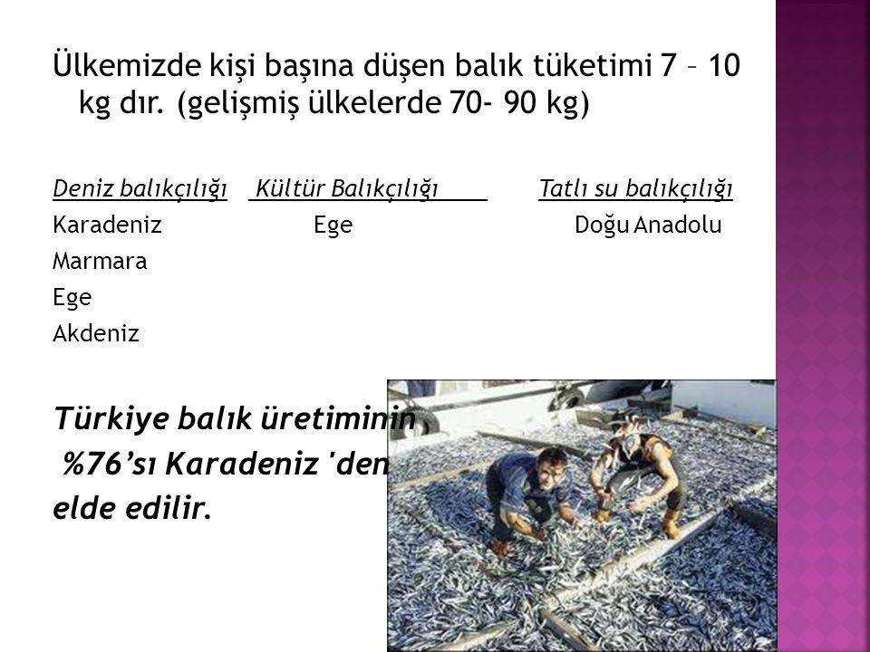 Türkiye balık üretiminin %76'sı Karadeniz den elde edilir.