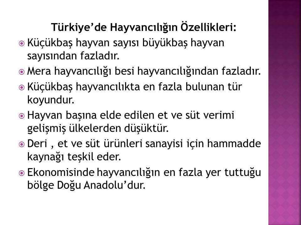 Türkiye'de Hayvancılığın Özellikleri: