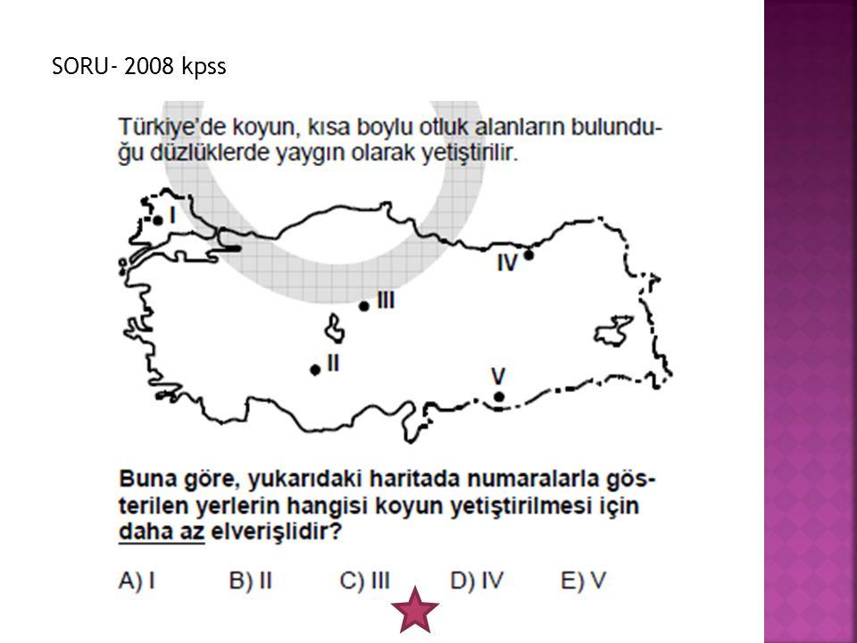 SORU- 2008 kpss