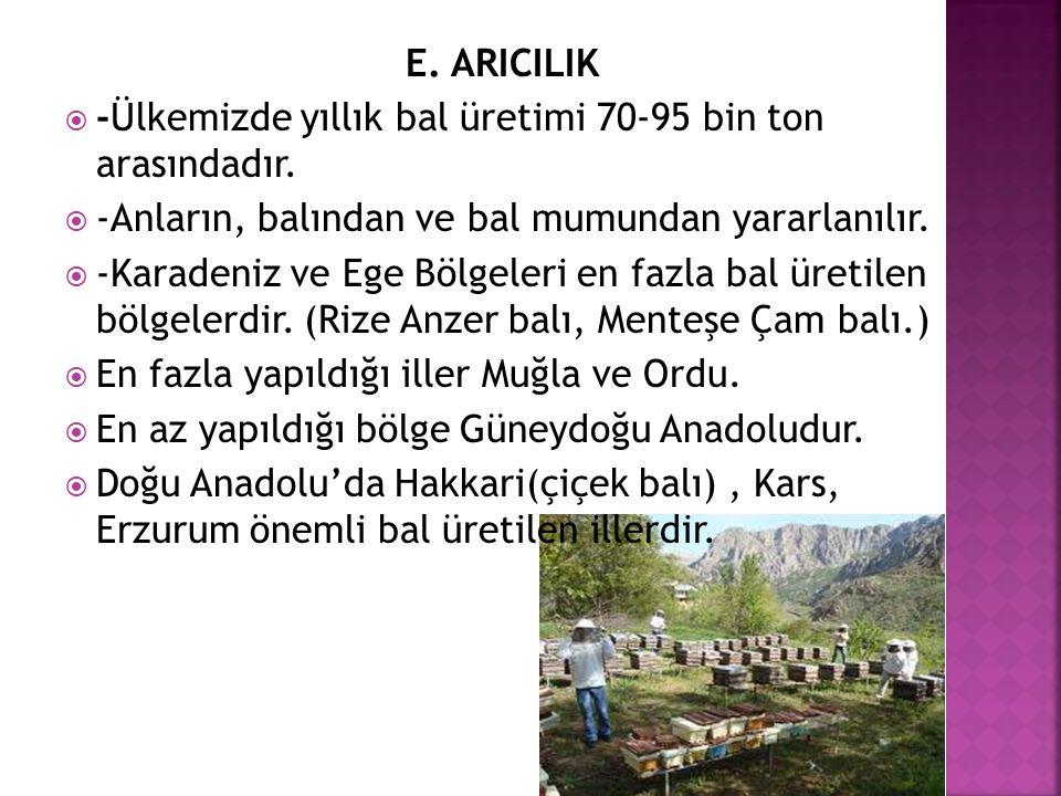 E. ARICILIK -Ülkemizde yıllık bal üretimi 70-95 bin ton arasındadır. -Anların, balından ve bal mumundan yararlanılır.