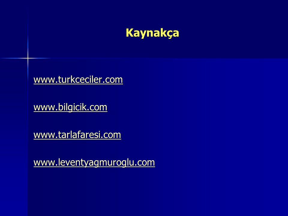 Kaynakça www.turkceciler.com www.bilgicik.com www.tarlafaresi.com