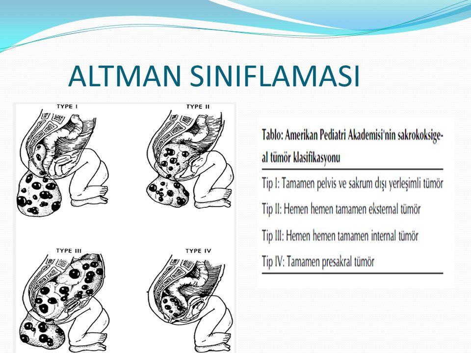 ALTMAN SINIFLANDIRMASI