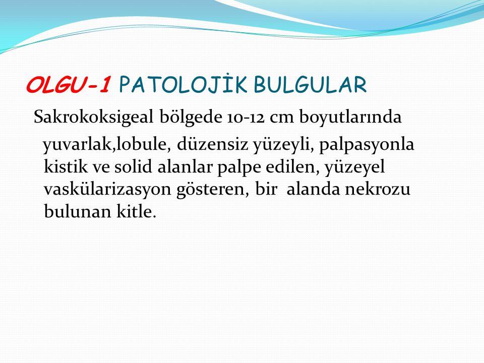 OLGU-1 PATOLOJİK BULGULAR
