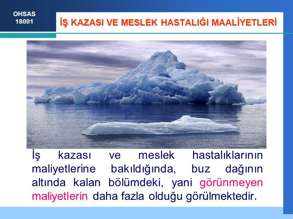 İŞ KAZASI VE MESLEK HASTALIĞI MAALİYETLERİ