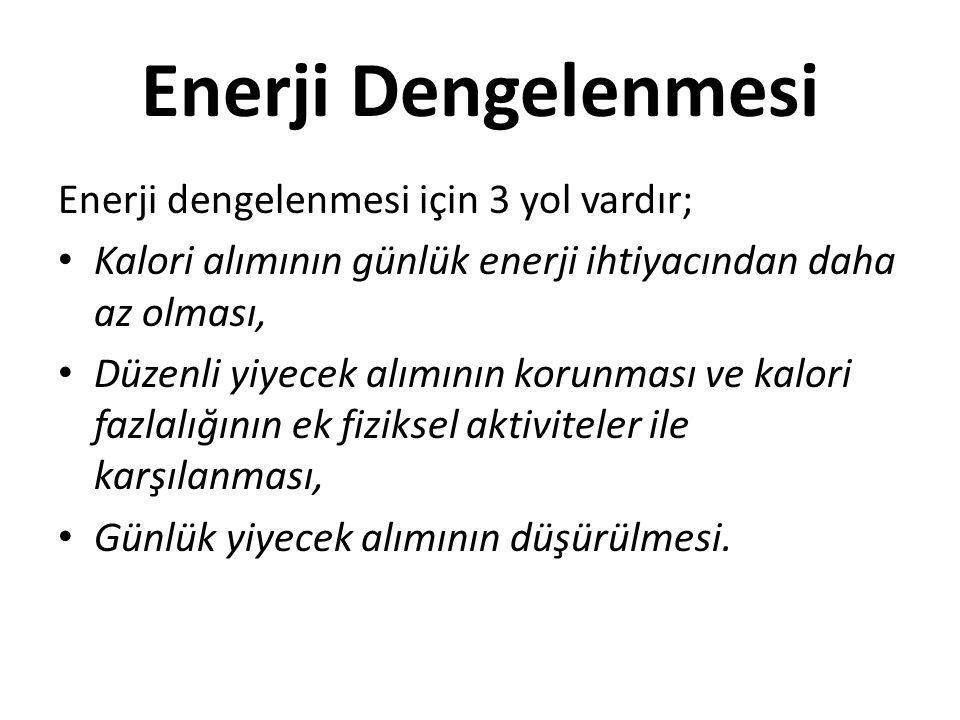 Enerji Dengelenmesi Enerji dengelenmesi için 3 yol vardır;