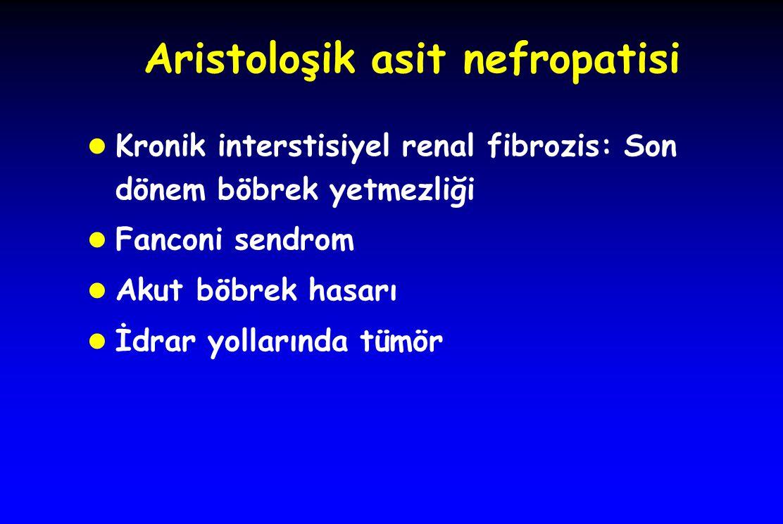 Aristoloşik asit nefropatisi