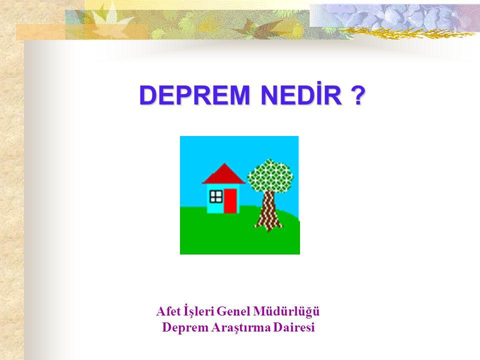 Afet İşleri Genel Müdürlüğü Deprem Araştırma Dairesi