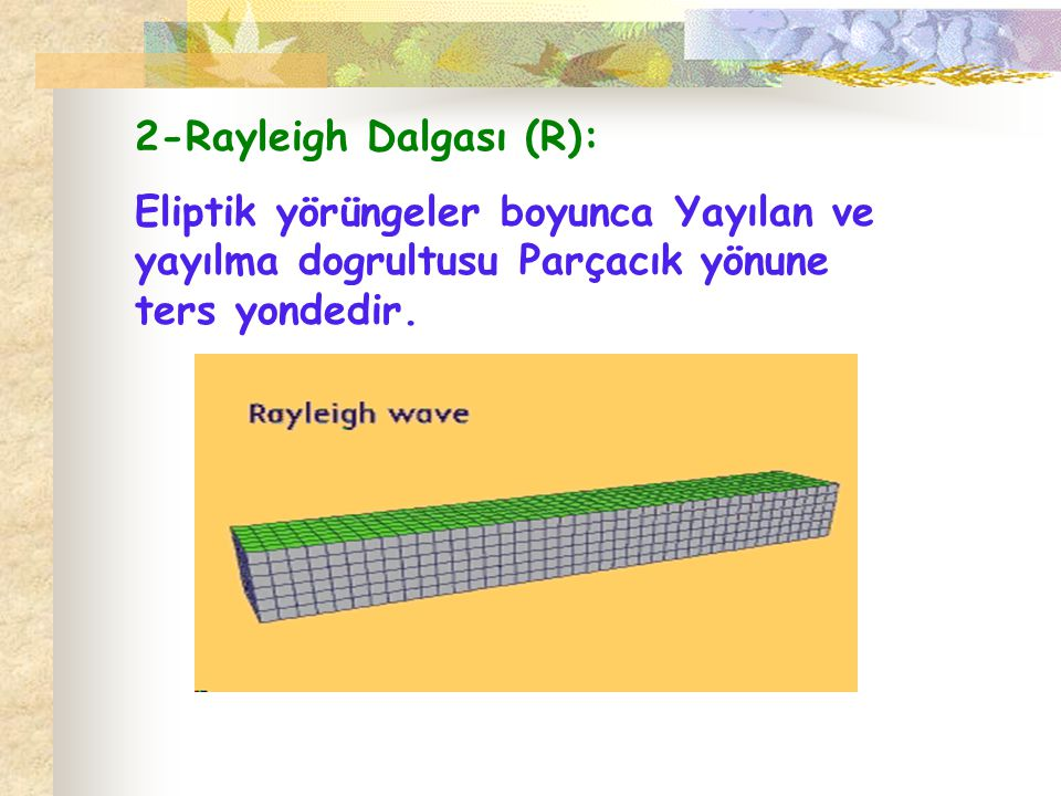 2-Rayleigh Dalgası (R):